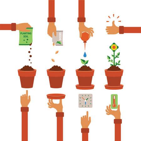 regando plantas: Vector calendario concepto infografía del proceso de plantación en diseño plano