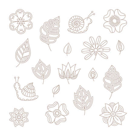 mono: vintage floral design elements set in mono line style