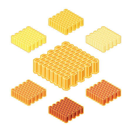 apiculture: Vector different shades or sorts of honey into honeycombs in isometric style