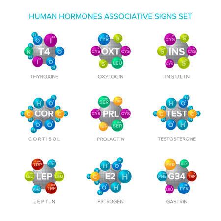 Human hormones vector signs with associative molecular structures set