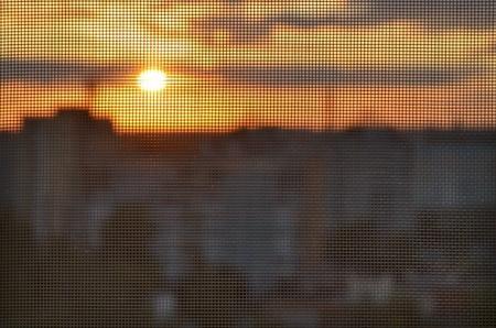 Puesta del sol a través de la mosquitera