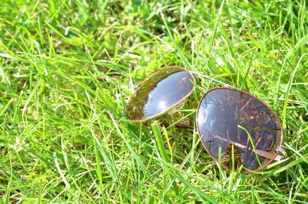 Gafas de sol en la hierba