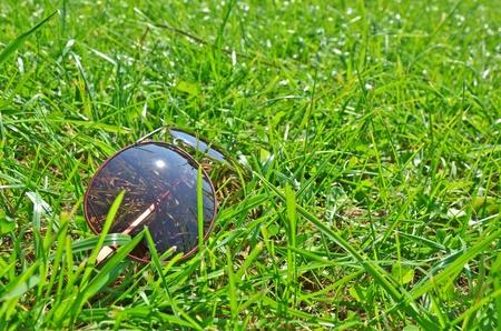 Occhiali da sole in erba
