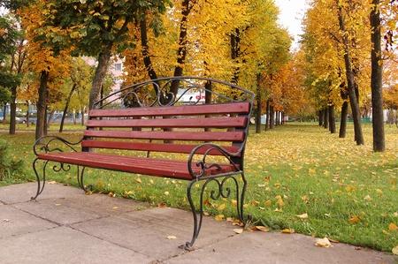 Alone brench in the autumn park Standard-Bild