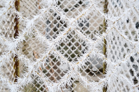 Door metal grid in frost needles photo