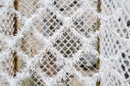 Door metal grid in frost needles Standard-Bild