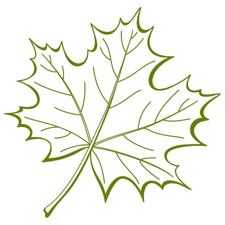maple leaf: Leaf of a maple, nature symbol, monochrome , isolated pictogram