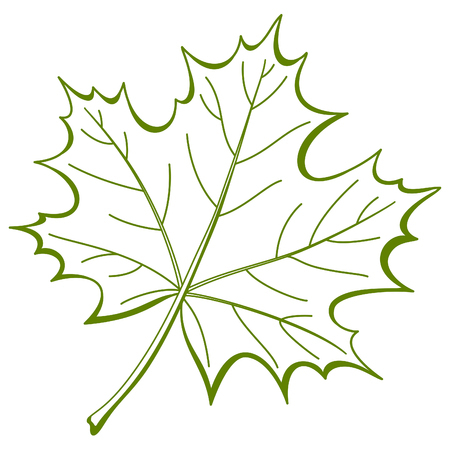 Leaf of a maple, nature symbol, monochrome , isolated pictogram