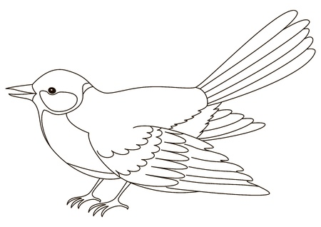 Bird a titmouse, a vector, the isolated horizontal image, contours