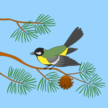 Bird titmouse sitting on a branch of a pine against the blue sky Stock Vector - 8487441