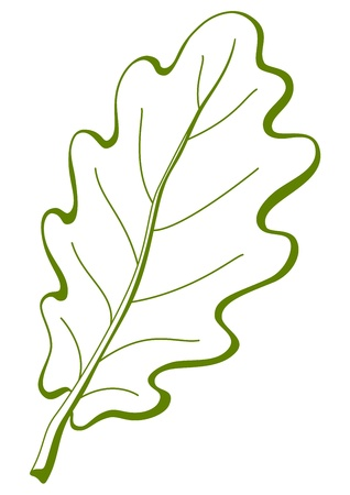 Leaf of oak tree, nature symbol, monochrome vector, isolated pictogram