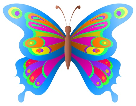 Natural image, beautiful butterfly with opened various wings Illustration