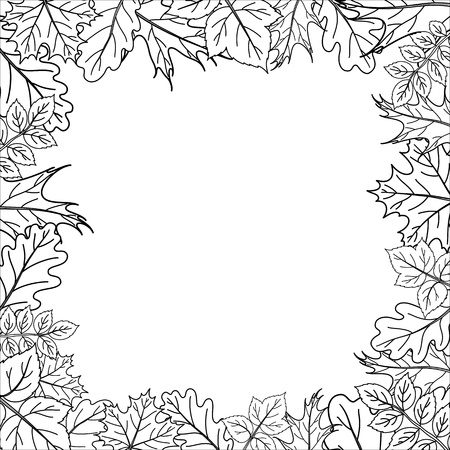 Vector, framework from leaves of various plants, black contours on white Stock Vector - 9684449