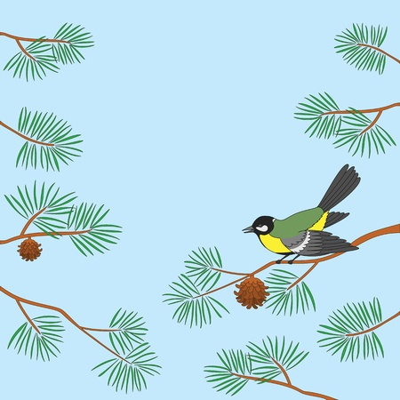 Background, bird titmouse sitting on pine branch against blue sky. Vector Vector