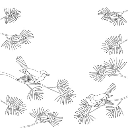pine cone: Background, pair birds titmouse sitting on pine branches. Vector Illustration
