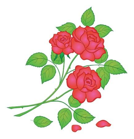 Blumen, Rosenstrauß, Liebe Symbol, floral Geschenk. Illustration