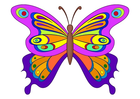 Natural image, beautiful butterfly with opened various wings photo
