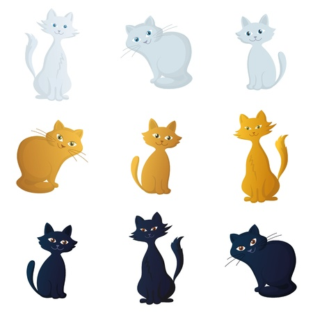grey cat: Cats, beautiful pets siting smiling, isolated on a white background Illustration