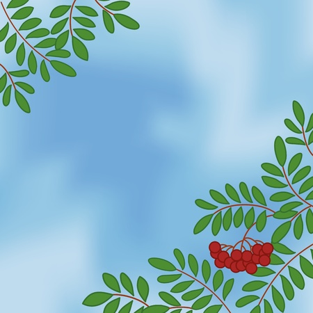 Background with rowanberry branches and berries on blue sky
