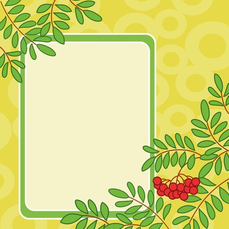 rowanberry: Background with table and rowanberry branches and berries on yellow