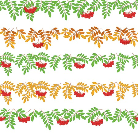 ashberry: Seamless pattern for web design - rowanberry branches and berries, isolated on white. Vector