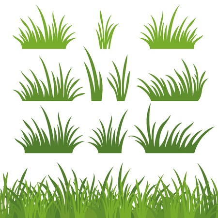 Line seamless and set of fresh green grass, element for design, isolated on white background. Vector