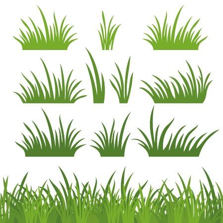 Linea senza soluzione di continuità e insieme di erba fresca verde, elemento di design, isolato su sfondo bianco. Vector Archivio Fotografico - 23711172