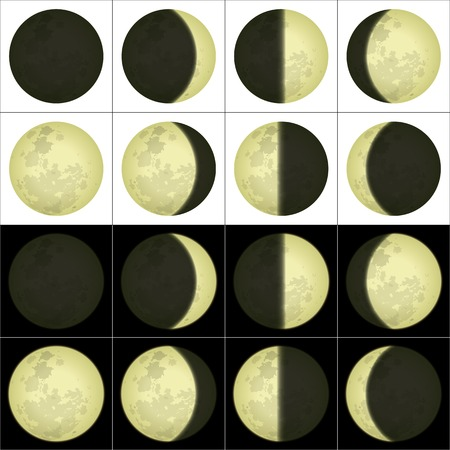 검은 색과 흰색 배경에 주요 달 단계의 공간 그림 일러스트