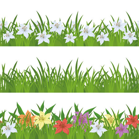 Floral seamless background with green grass and lily flowers of various colors, isolated on white. Vector Vector