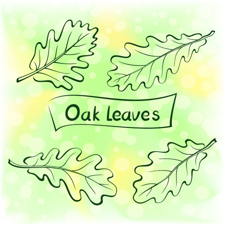 eco notice: Set of Plant, Oak Leaves. Nature Green and Yellow Summer Background.