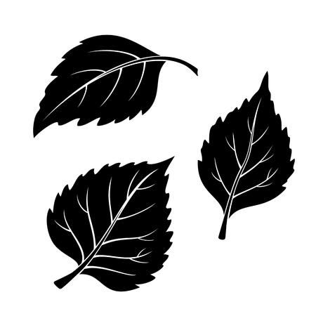 leaf shape: Set of Plant Pictograms, Birch Tree Leaves, Black on White.