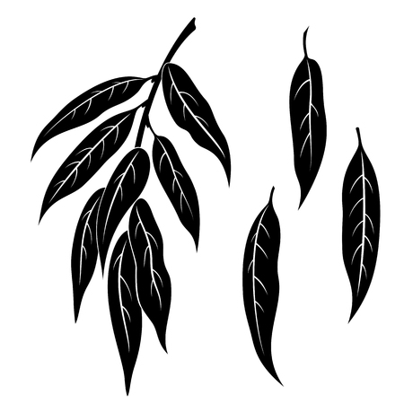 picto: Set of Plant Pictograms, Willow Tree Leaves, Black on White. Vector Illustration