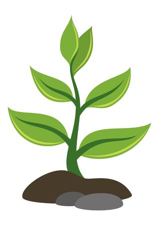 symbolical: Symbolical Plant with Green Leaves Growing out of the Rocky Ground, Icon, Isolated on White Background.