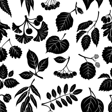 linden tree: Seamless Nature Background with Pictogram Tree Leaves, Willow, Hawthorn, Poplar, Aspen, Ginkgo Biloba, Elm, Alder, Linden, Rowan, Chestnut, Black Chokeberry and Beech. Black on White. Illustration