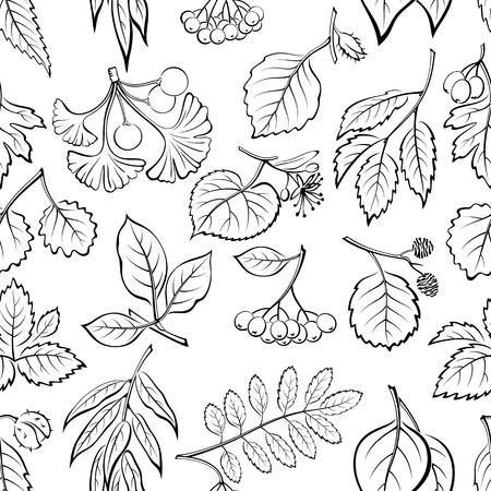 linden: Seamless Nature Background with Pictogram Tree Leaves, Willow, Hawthorn, Poplar, Aspen, Ginkgo Biloba, Elm, Alder, Linden, Rowan, Chestnut, Black Chokeberry and Beech. Black on White. Vector Illustration