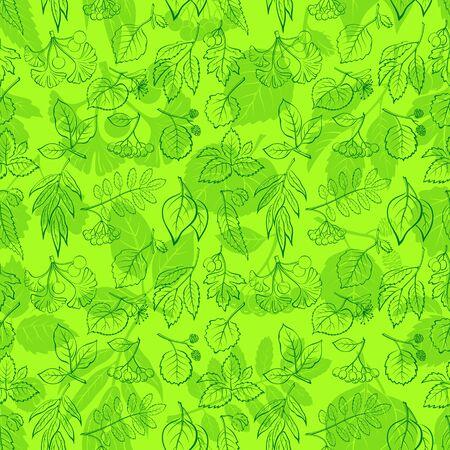 chokeberry: Seamless Nature Background with Green Summer Tree Leaves Contours and Silhouettes, Willow, Hawthorn, Poplar, Aspen, Ginkgo Biloba, Elm, Alder, Linden, Rowan, Chestnut, Black Chokeberry, Beech. Vector