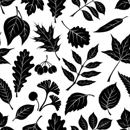 chestnut tree: Seamless Nature Background with Black Pictogram Tree Leaves, Oak, Iberian Oak, Raspberry, Willow, Liquidambar, Hawthorn, Aspen, Ginkgo Biloba, Elm Karagach, Birch, Ash, Chestnut and Sambucus. Vector Illustration