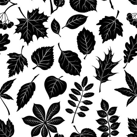 chokeberry: Seamless Pictogram Tree Leaves Dogrose, Oak, Iberian Oak, Maple, Liquidambar, Hawthorn, Poplar Silver, Hazel, Elm, Birch, Linden, Rowan, Chestnut, Buckeye, Viburnum, Chokeberry, Lilac and Teak. Vector