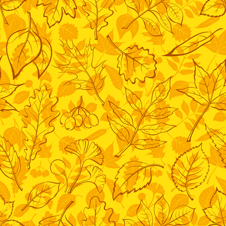 Seamless Background, Autumn Tree Leaves Contours and Silhouettes Oak, Iberian Oak, Raspberry, Willow, Liquidambar, Hawthorn, Aspen, Ginkgo Biloba, Elm Karagach, Birch, Ash, Chestnut, Sambucus. Vector
