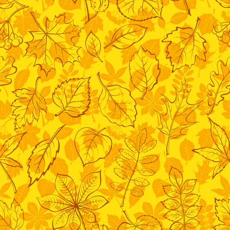 chokeberry: Seamless Leaves Contour Silhouettes Dogrose, Oak Iberian Oak, Maple, Liquidambar, Hawthorn, Poplar Silver, Hazel, Elm, Birch, Linden, Rowan, Chestnut, Buckeye, Viburnum, Chokeberry, Lilac, Teak Vector
