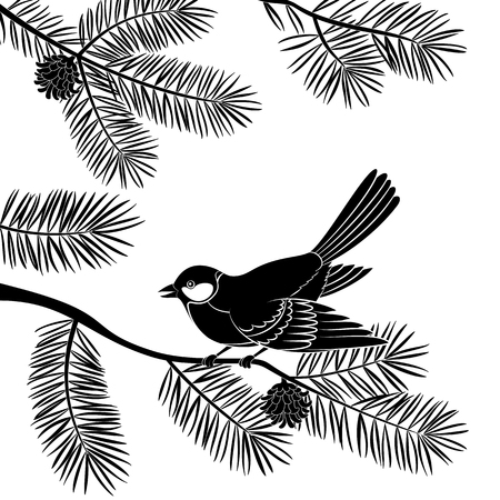 chickadee: Bird Titmouse Sitting on Pine Tree Branch with Needles and Cones, Black Silhouette Isolated on White Background. Vector
