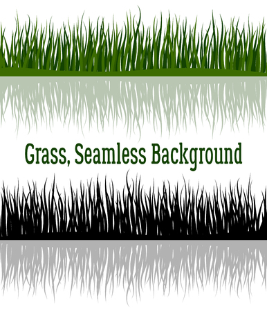 Line Seamless Background with Color Green and Black Silhouette Grass with Refractions, Element for Your Design, Isolated on White Background. Vector
