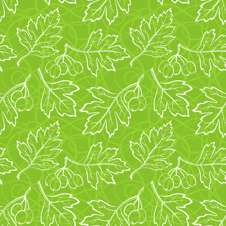 Seamless Background with Pictogram White Leaves of Hawthorn Tree, Tile Green Nature Pattern. Vector