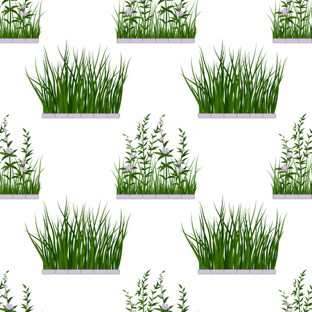 Fresh Green Grass and Lilac Flowers Illustration