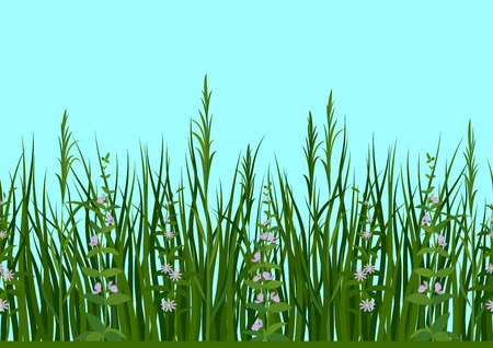 Seamless Horizontal Background, Nature, Landscape with Fresh Green Grass, Leaves, Lilac Flowers and Blue Sky, Tile Pattern Vector illustration.