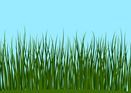 Seamless Horizontal Background, Nature, Landscape with Fresh Green Grass and Blue Sky Ilustração