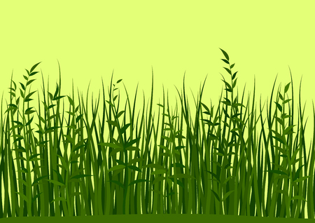 Seamless Horizontal Background, Nature, Landscape with Fresh Green Grass and Leaves on Yellow, Tile Pattern for Your Design. Vector
