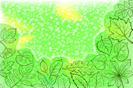 Background with Leaves of Various Plants Illustration