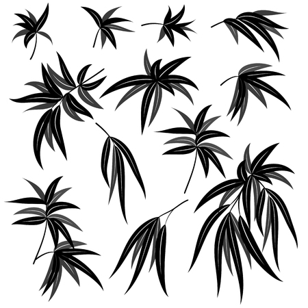 Set of Plant Pictograms, Willow Tree Leaves, Black on White. Vector Stock Illustratie