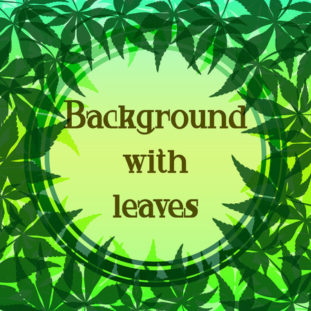 Background with Green Leaves of Japanese Fan Maple Tree and Round Frame. Vector 일러스트